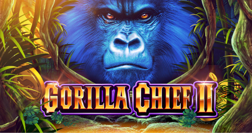 Gorilla Chief